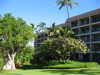 Tropical gardens surround the Kihei Akahi complex
